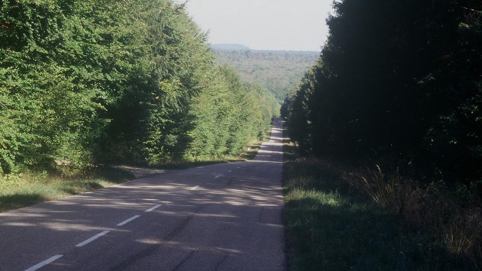 Une longue traversée forestière